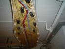 DSC06109.JPG