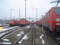 DSC05830.JPG