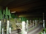 MIST1 Reise am 13.08.2005