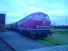 DSC03013.jpg